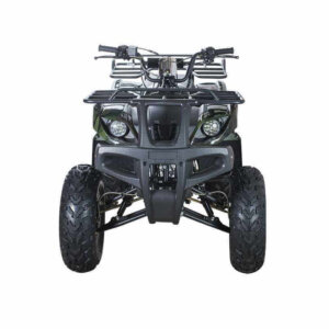 Квадроцикл WELS ATV Thunder 200 1