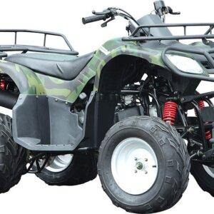 Квадроцикл WELS PURGA 170 2
