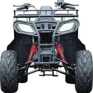 Квадроцикл WELS PURGA 170 1