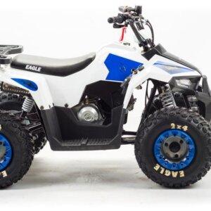 Квадроцикл детский Motoland EAGLE 110