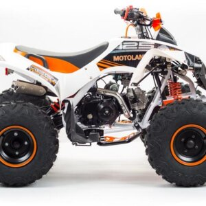 Квадроцикл детский Motoland RAPTOR 125