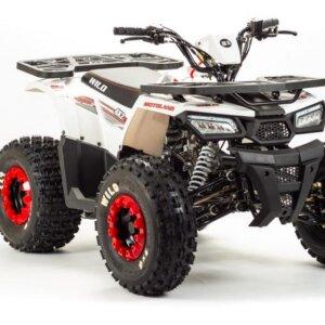 Квадроцикл детский Motoland WILD 125