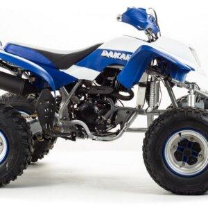 Квадроцикл спортивный Motoland DAKAR
